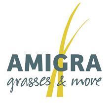 AMIGRA Grasses & more
