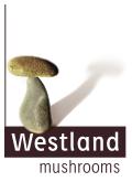Westland Mushrooms BV